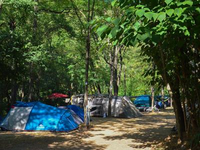Les emplacements du camping